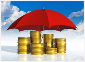 Financial Protection Image